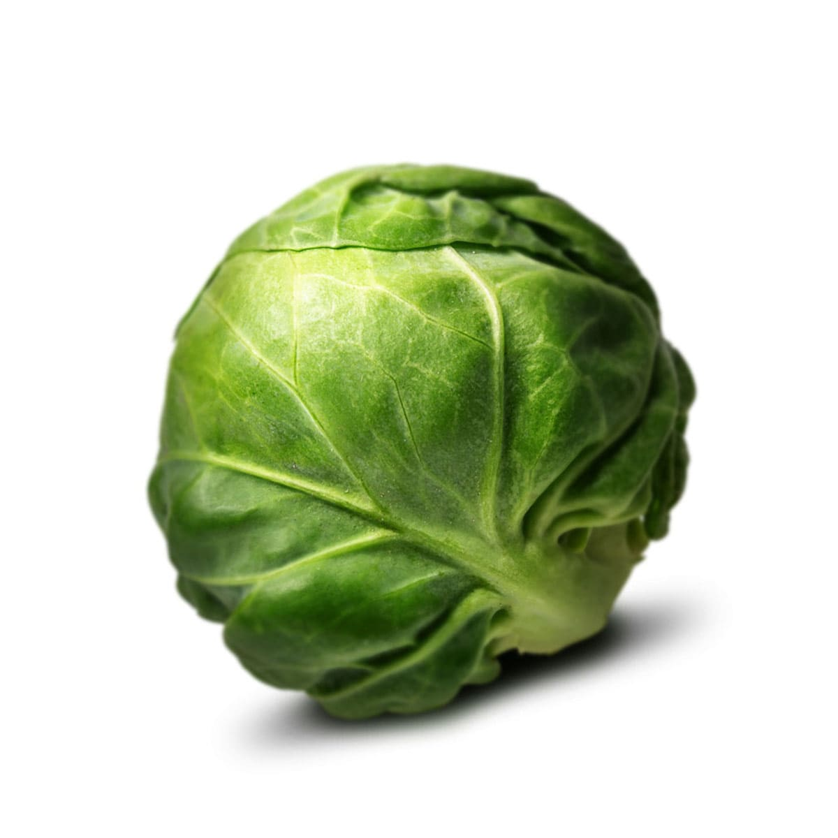 brussel-sprout-centered-min