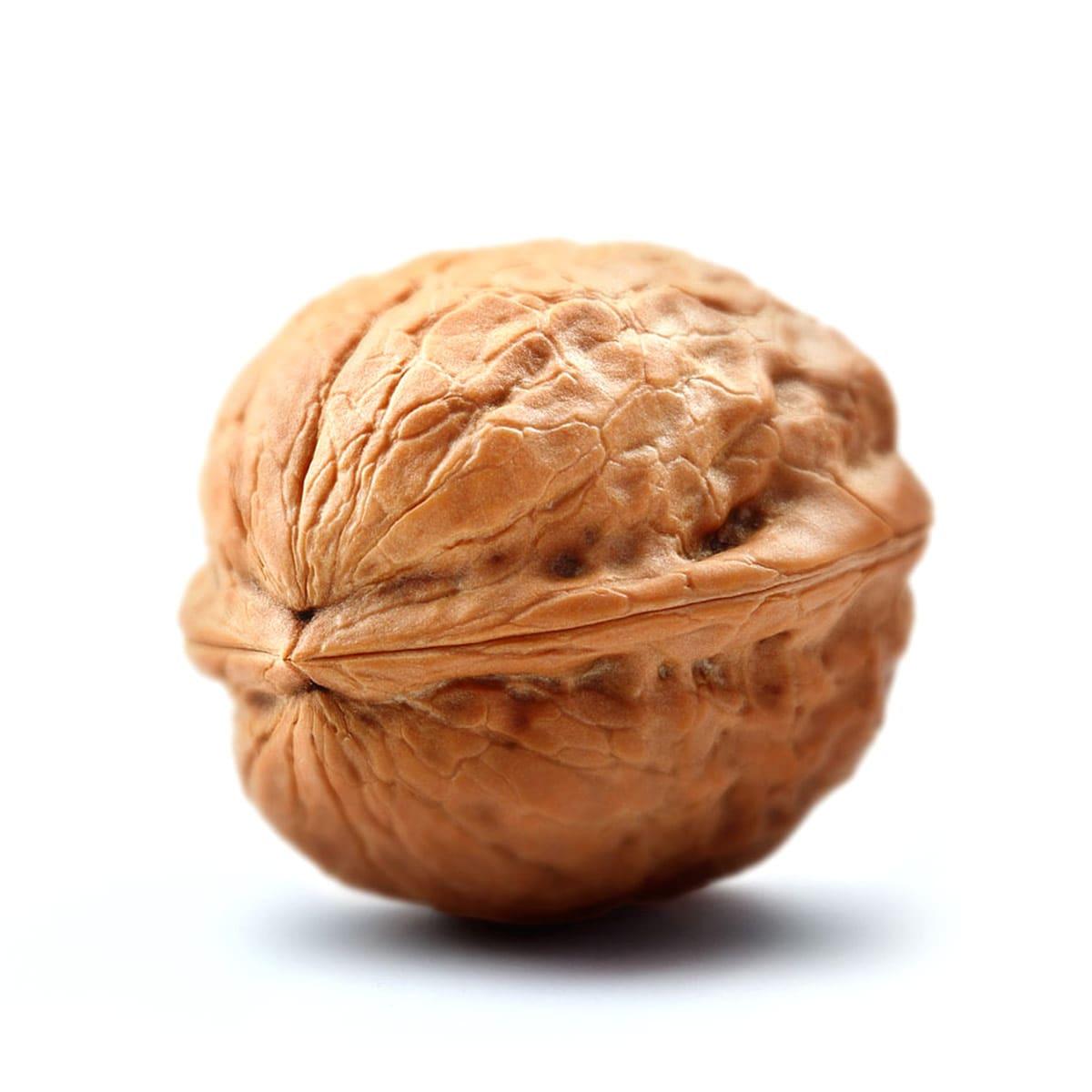 walnut-centered-min
